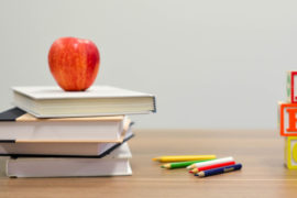 Σχολείο Ν. Προποντίδας - Βαγιωνάς Γιώργος - Βουλευτής Χαλκιδικής της ΝΔ