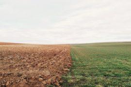 χωράφι-κλιματική αλλαγή